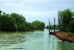 多瑙河三角洲