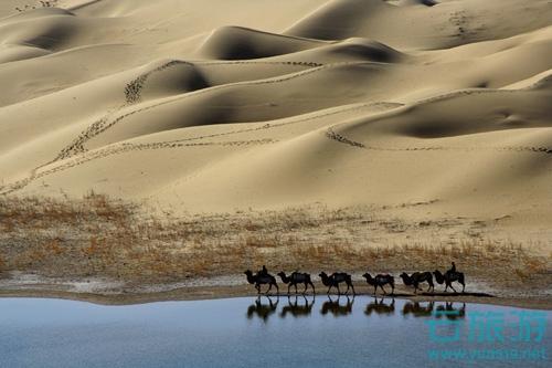 塔里木河由发源于天山的阿克苏河、发源于喀喇昆仑山的叶尔羌河以及和田河汇流而成,流域面积19.8万平方公里,最后流入台特马湖。它是中国第一大内流河,全长2179公里,仅次于前苏联的伏尔加河,锡尔—纳伦河、阿姆—喷赤—瓦赫什河和乌拉尔河,为世界第5大内流河,中国最长的内流河。在新疆维吾尔自治区塔里木盆地北部。历史上塔里木河河道南北摆动,迁徙无定。最後一次在1921年,主流东流入孔雀河注入罗布泊。1952年在尉犁县附近筑坝,同孔雀河分离,河水复经铁干里克故道流向台特马湖。