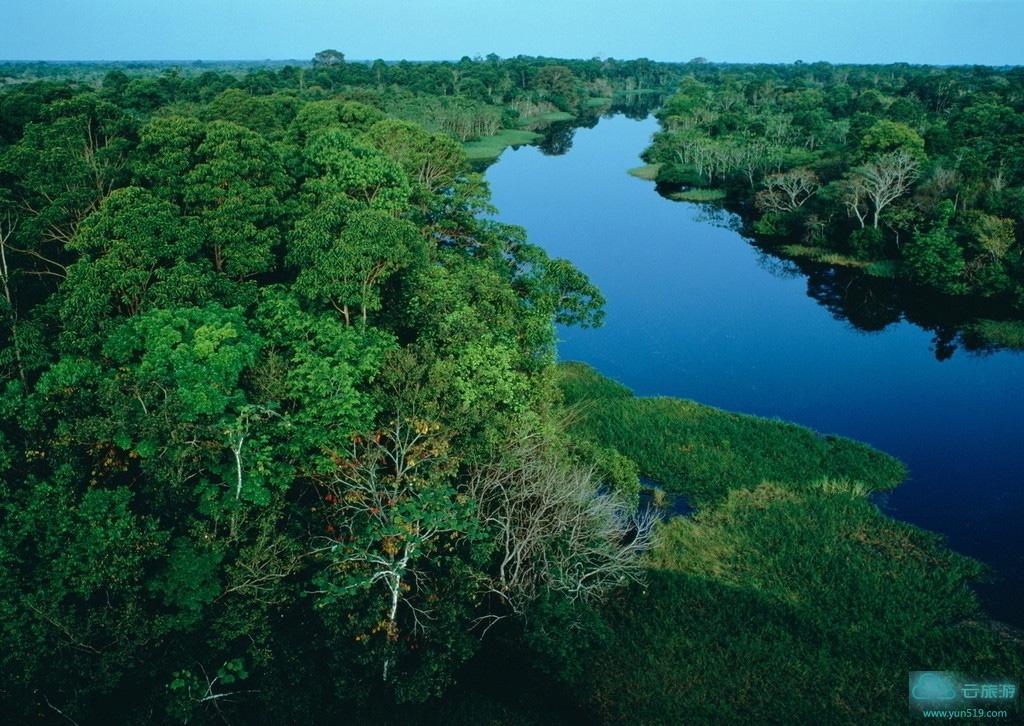 亚马孙热带雨林 (amazon rain forest) 位于南美洲的亚马逊盆地