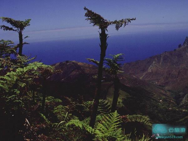 圣赫勒拿岛 - 云旅游 - 景点介绍_地图_旅游网